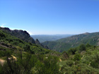 Le Parc Régional du Haut Languedoc - Une faune et une flore exceptionnelles